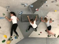 Clip and Climb (3)