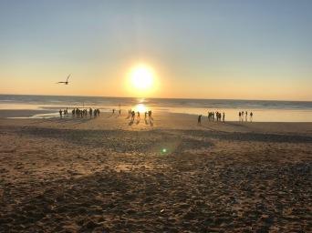 Surf Trip (14)